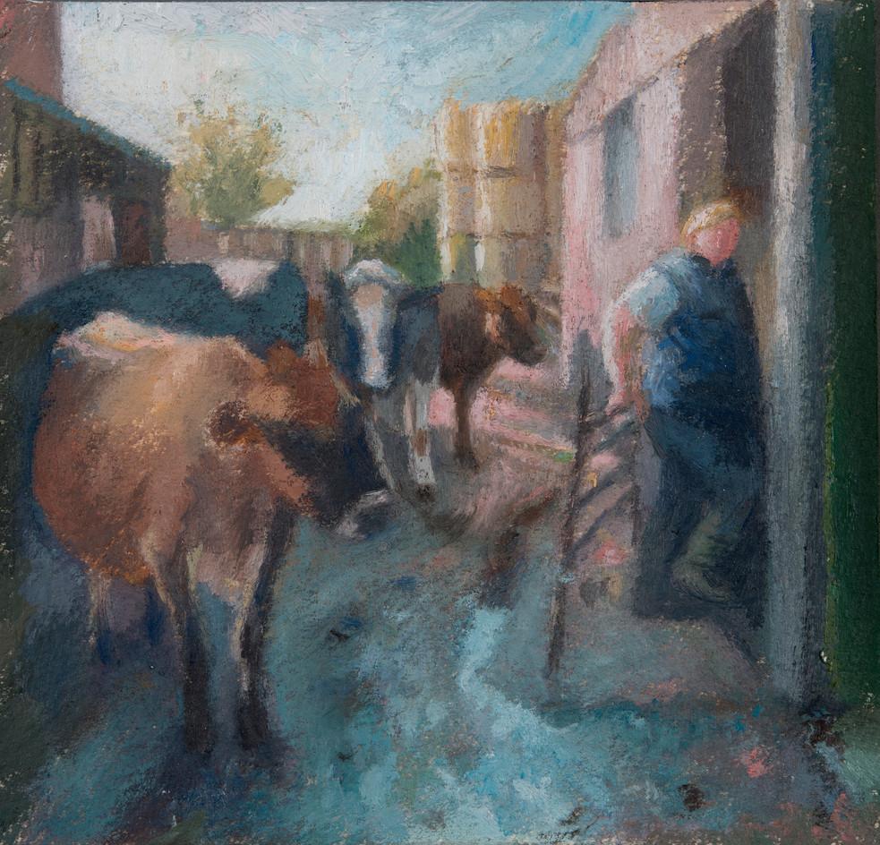 Milking time, Butterwell Farm