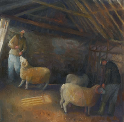 In the barn with the Exmoor Horn rams