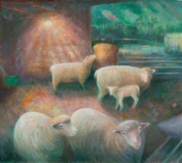 Ewes and lamb, evening