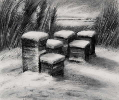 Hives in snow