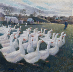 Jeff Cracknell and the Christmas Geese