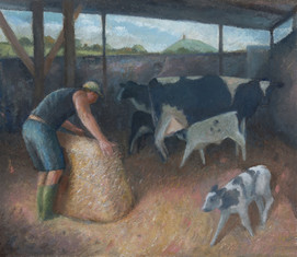 Thomas in the barn, Butleigh Road Farm
