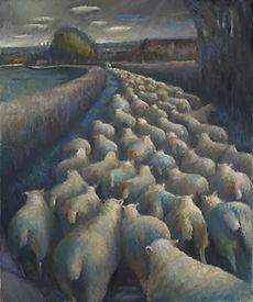 KATELYNCH SHEEP1.jpg