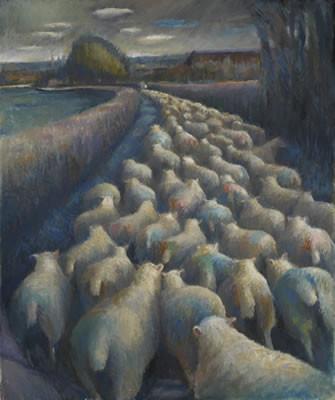 Raddled ewes back to pasture