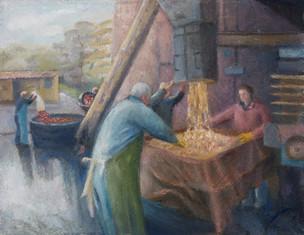 The Lockyer family pressing apples for cider