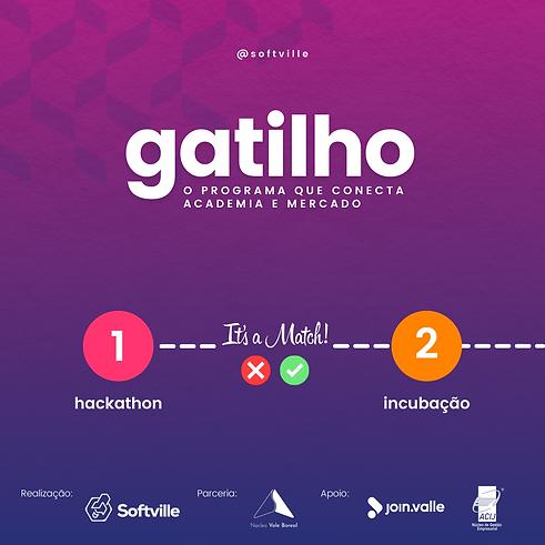 Programa Gatilho Softville (1).png