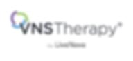VNS-LN-standard-horizontal.png 2020 Logo