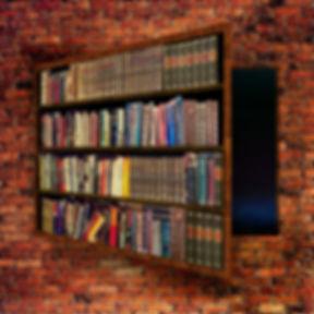 bookcase-4009959_960_720.jpg