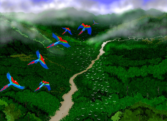 Flight of the Macaws