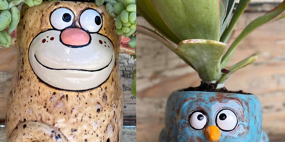 Quirky Succulent Planter and Plant