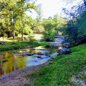 2019-09-23 to 25: Georgia Parks