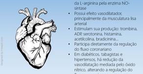 Óxido nítrico: regulador do fluxo coronariano