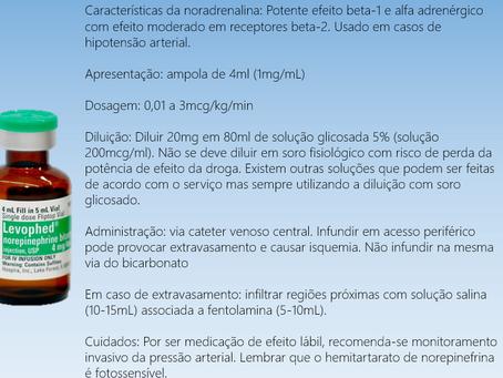Diluição de noradrenalina: fisiológico ou glicosado?