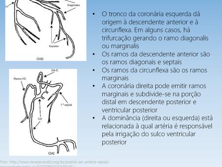 O que você observa nesse cateterismo?