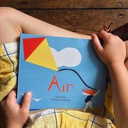 Air - Home Grown Books