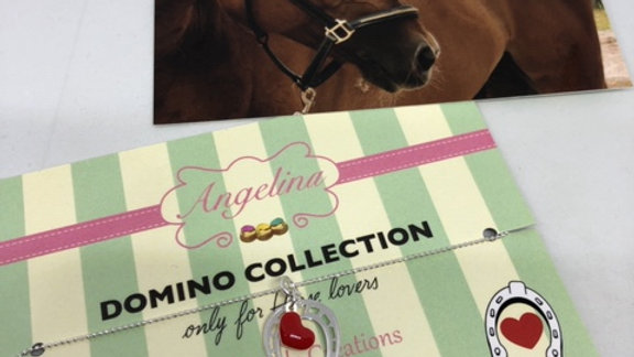 DOMINO COLLECTION Only for horse lovers