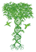 LOGO_LEAF_DETAILED_drkgrn_2.png