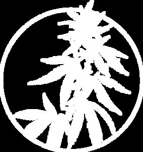 cbd exchange logo white.png