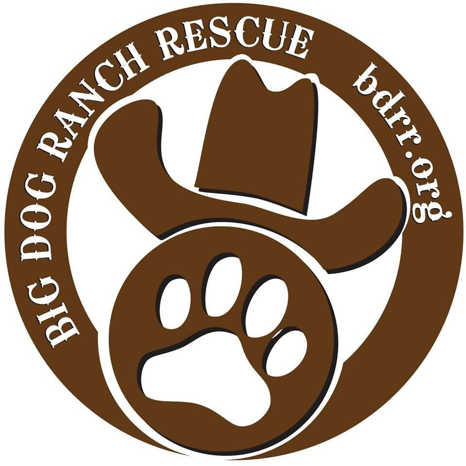 big-dog-ranch-logo.jpg