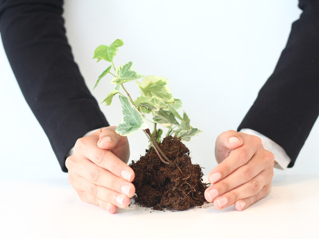 Nurturing Growth
