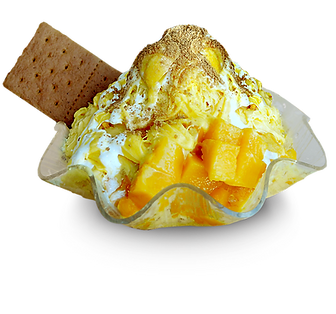 SNOW ICE special 12 mango float copy.png