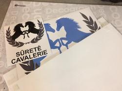 Sûreté Cavalerie_Magnétique_2017