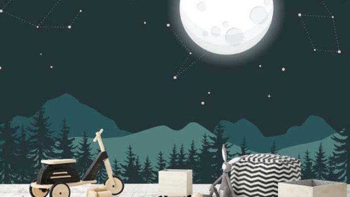 Murale 'Au clair de lune' 10'x8'