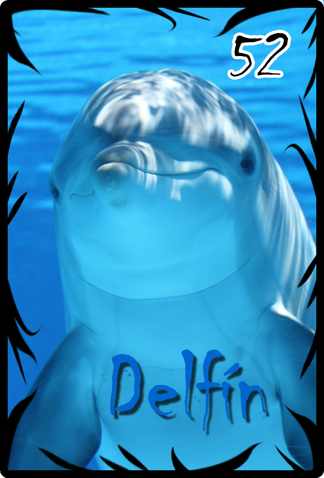 52 delfin.png