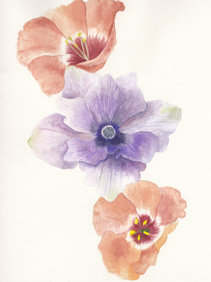 Florals Megan Hilliard.jpg