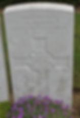 dc49.jpg