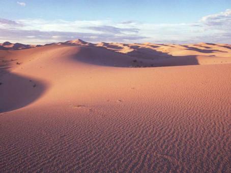 Silencio del desierto.