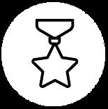 widget-medalha.png