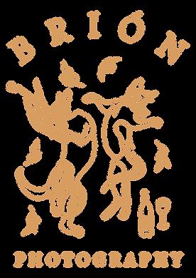 Apricot_Hero_Logo_Large.png