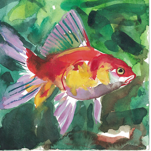 WENDY KLEMPERER | 6 x 6 Watercolor (Fish)