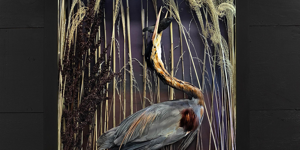 NATURE INSPIRES: OPENING RECEPTION FOR CHRISTOPHER TENNANT