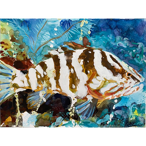 WENDY KLEMPERER | 9 x 11 Watercolor (Tropical Fish)
