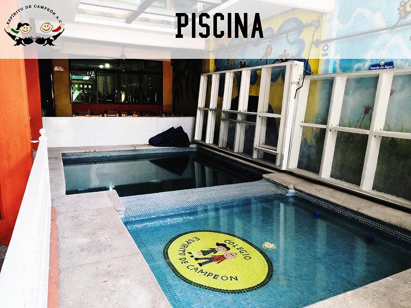 1Piscina.jpg