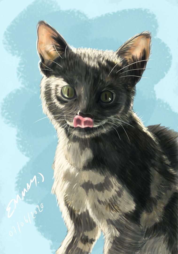 Digital Painting - Cat