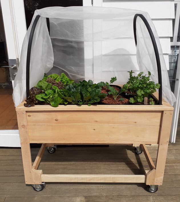Ultimate self-watering flexibility