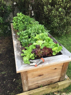 cJennifer Barclay Garden install.jpg