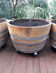 Self-watering wine barrels with optional wheels