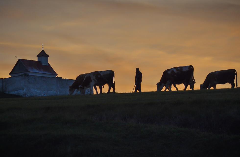 Csíkszenttamás / Tomești Harghita county / Hargita megye / Județul Harghita Romania / Románia / România / 2017