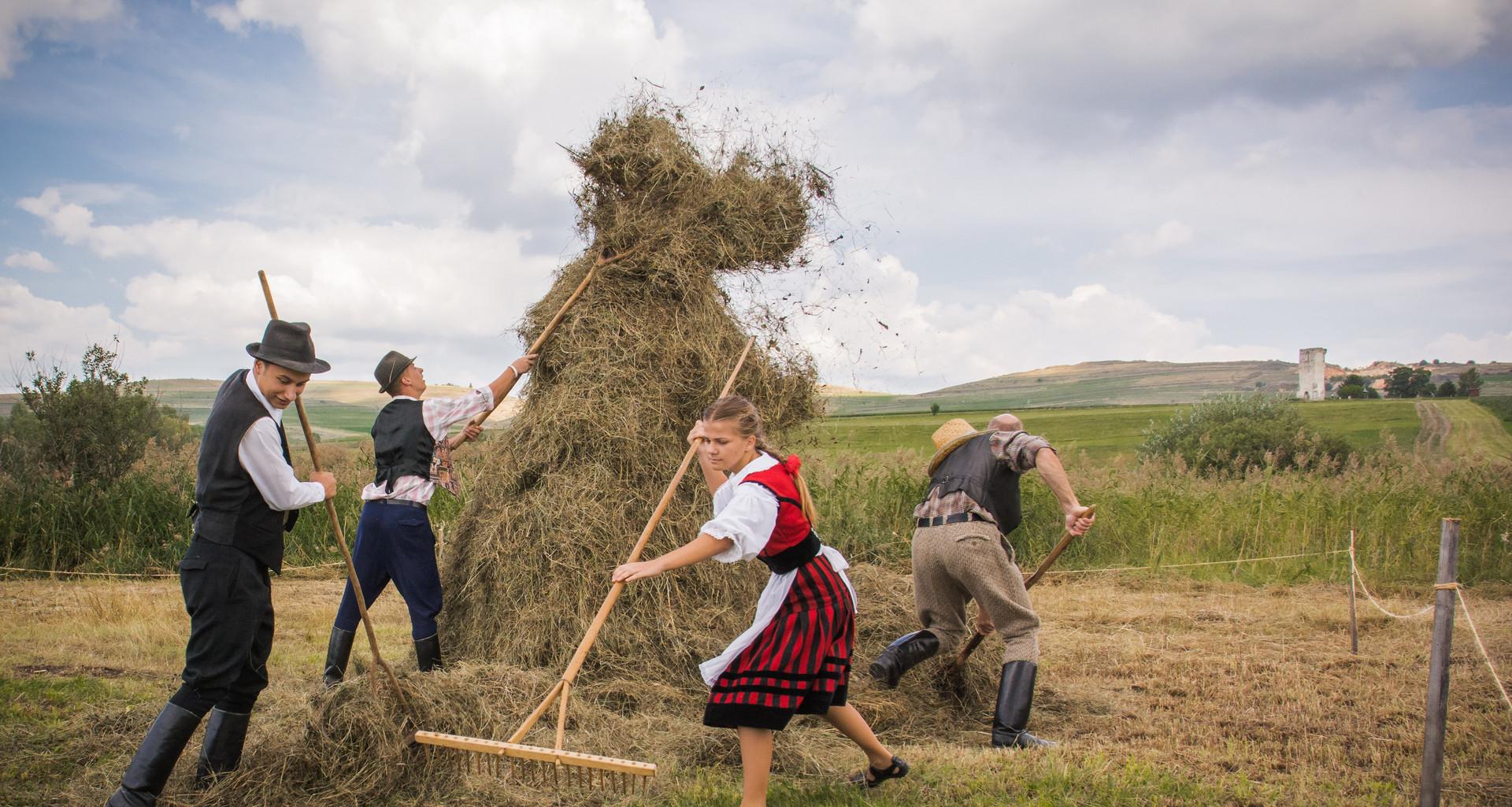 Csíkszenttamás / Tomeșt Harghita county / Hargita megye / Județul Harghita Romania / Románia / România 2016
