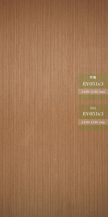 EV051x3