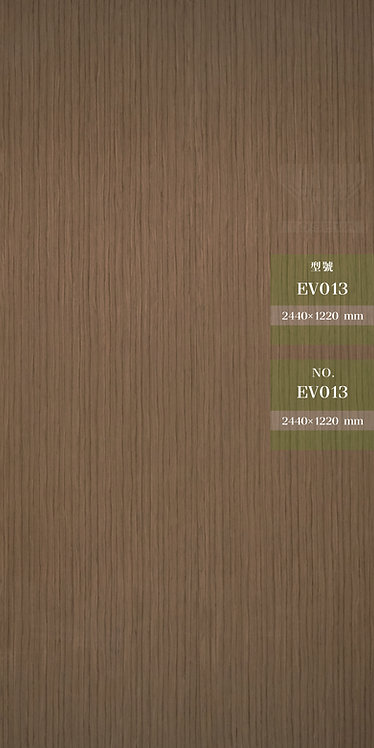 EV013