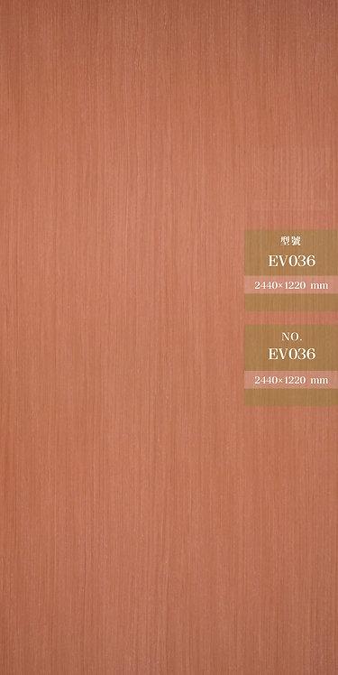 EV036