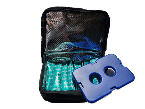 Insulated Travel Bag