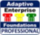 AEFPlogosmall.jpg