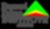 DDI Affiliate Logo.png