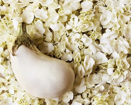 Eggplant_white
